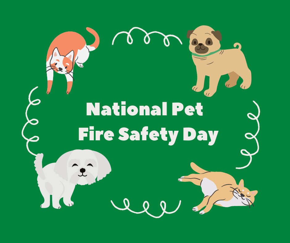 National Pet Fire Safety Day is July 15th